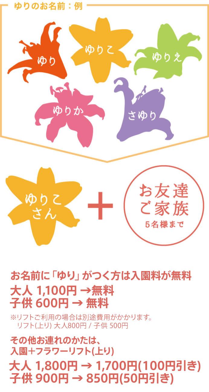 ゆり割 | <公式>ハンターマウンテンゆりパーク2019 | 日本最大数400 ...