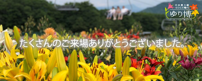 遅咲きがまだ開花中。